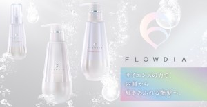 flowdia_concept_new